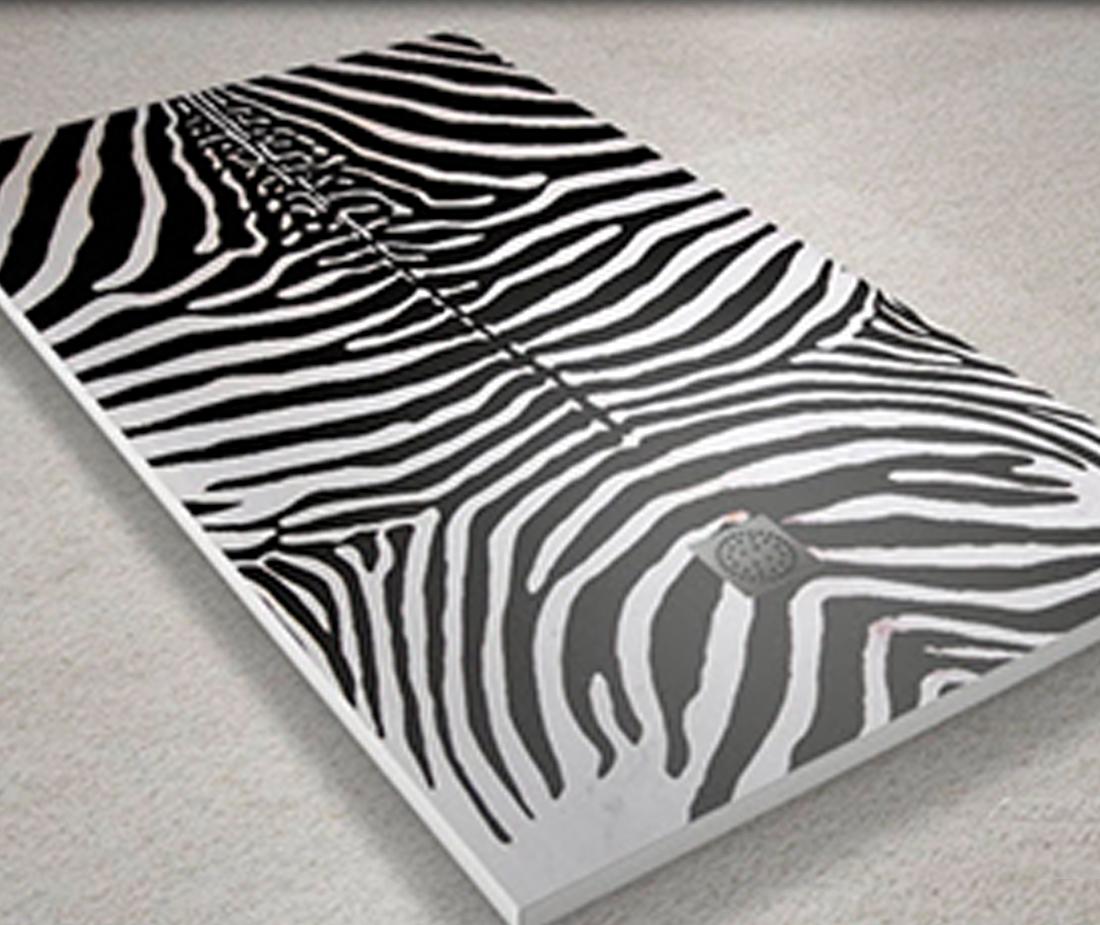 Bano_PlatoDucha_Zebra